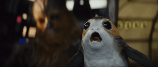 Star Wars Creatures & The Real Life Animals They're Based On